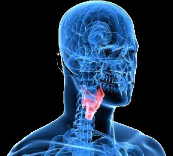 La odontología en el cáncer de laringe